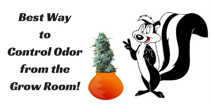 Best Way to Control Odor from the Grow Room!