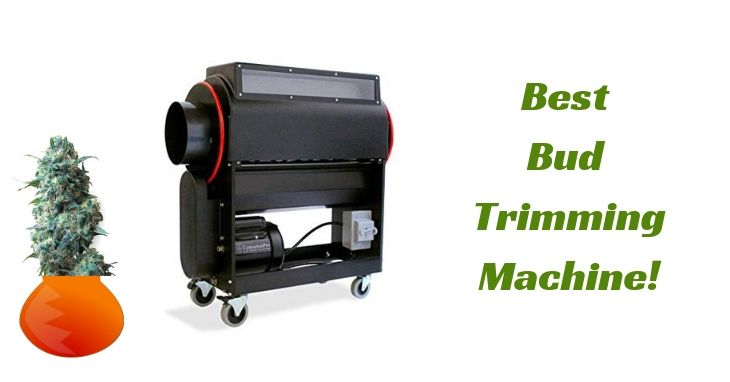 best bud trimming machine