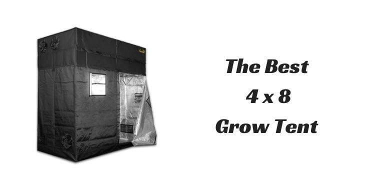 Best 4x8 Grow Tent